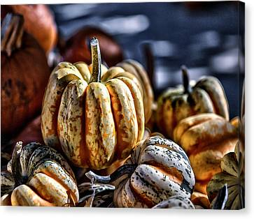 Farm Stand Canvas Print - Autumn Glow by Caitlyn  Grasso