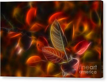 Autumn Glow Canvas Print by Veikko Suikkanen