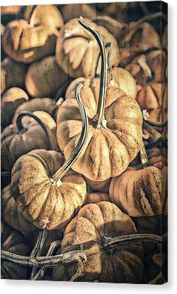 Farm Stand Canvas Print - Autumn Grunge by Caitlyn  Grasso