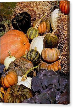 Autumn Harvest Canvas Print by Rosanne Jordan
