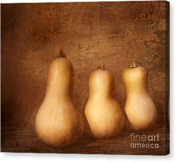 Canvas Print featuring the photograph Autumn Harvest Still Life by Kathi Mirto