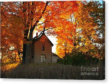 Fall Leaves Canvas Print - Autumn Haunt by Terri Gostola