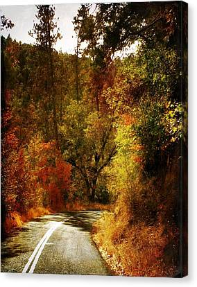 Autumn Highway Canvas Print