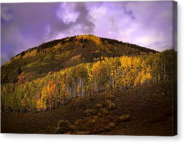 Canvas Print featuring the photograph Autumn Hillside by Ellen Heaverlo