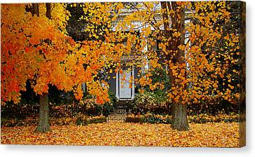 Autumn Homecoming Canvas Print