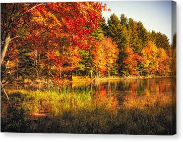 Autumn Hot Mess Canvas Print by Robert Clifford