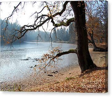 Autumn Impressions 3 Canvas Print