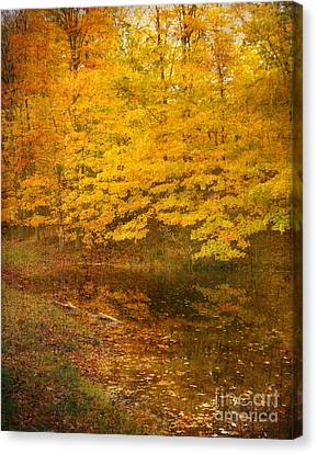 Canvas Print featuring the photograph Autumn Impressions by Kathi Mirto