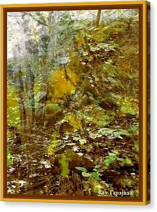 Autumn Impressions Canvas Print by Ray Tapajna
