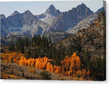 Autumn In Bishop Canyon In The Eastern Sierras Canvas Print by Jetson Nguyen