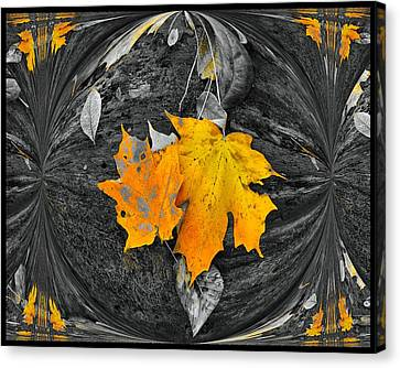 Autumn In Color Canvas Print by Dan Sproul