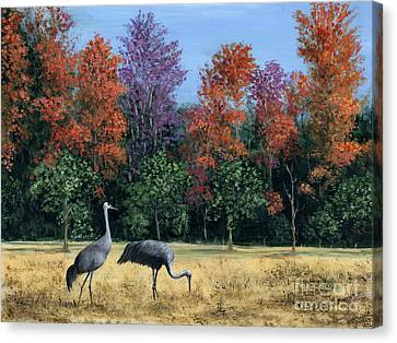 Autumn In Florida Canvas Print by Marilyn Dunlap