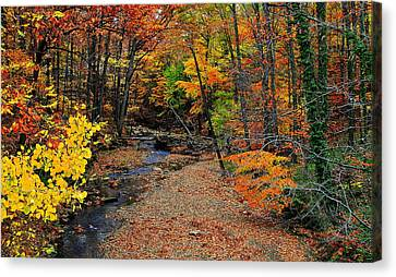 Marvelous View Canvas Print - Autumn In Full Bloom by Frozen in Time Fine Art Photography