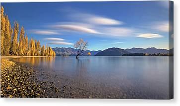 Autumn In Lake Wanaka Canvas Print