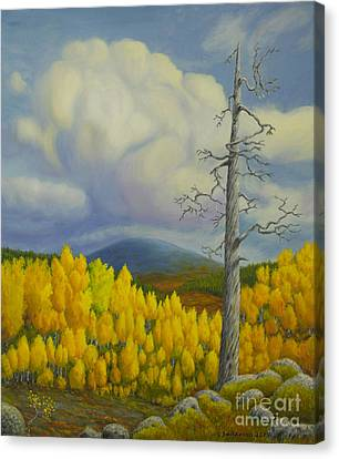 Autumn In Lapland Canvas Print by Veikko Suikkanen