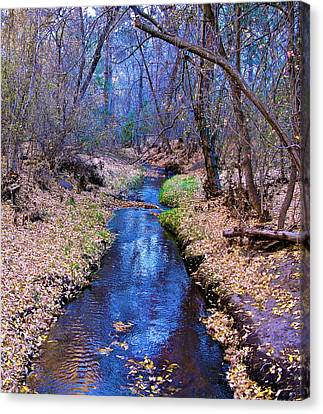 Canvas Print featuring the photograph Autumn In New Mexico by John Babis