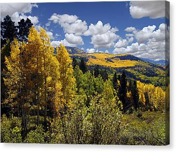 Autumn In New Mexico Canvas Print