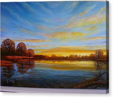 Autumn In Richmond Park. Canvas Print by Janet Silkoff