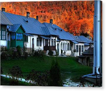 Autumn In Romania Canvas Print by Daliana Pacuraru