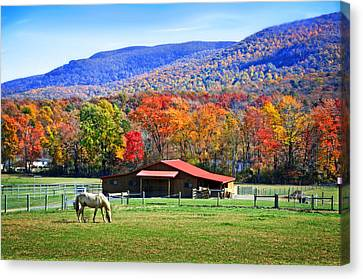 Autumn In Rural Virginia  Canvas Print
