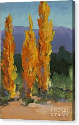 Walking The Wash In Sante Fe Canvas Print by Maria Hunt
