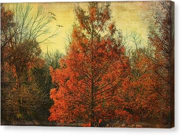Autumn In Texas Canvas Print by Joan Bertucci