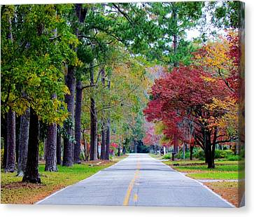 Canvas Print featuring the photograph Autumn In The Air by Cynthia Guinn