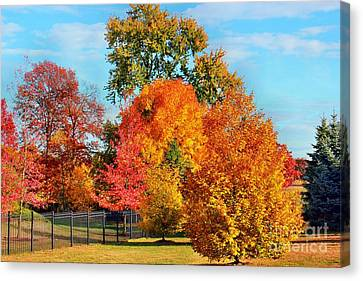 Autumn In The Air Canvas Print by Judy Palkimas