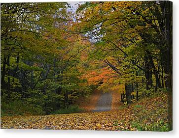 Autumn In The Caledon Hills Canvas Print by Gary Hall