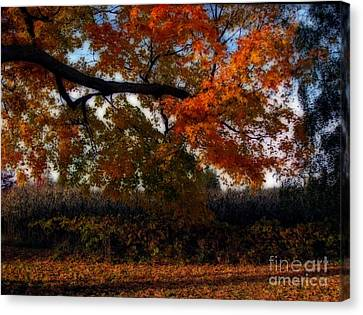 Autumn In The Country Canvas Print by Inspired Nature Photography Fine Art Photography