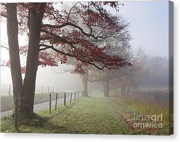 Autumn In The Cove IIi Canvas Print