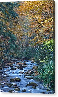 Autumn In The Great Smoky Mountains Vi Canvas Print