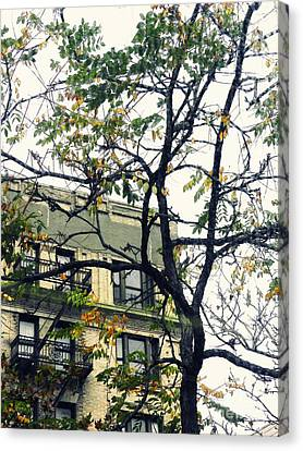 Autumn In The Heights Canvas Print by Sarah Loft