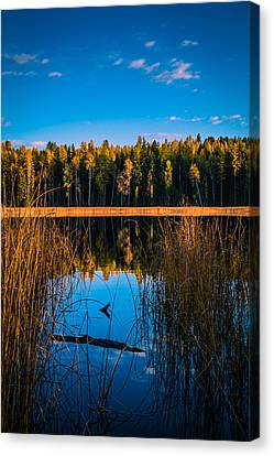 Canvas Print featuring the photograph Autumn In The Kootenays by Rob Tullis