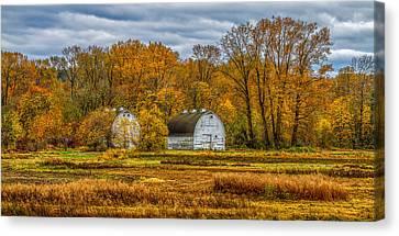 Autumn In The Meadows Canvas Print