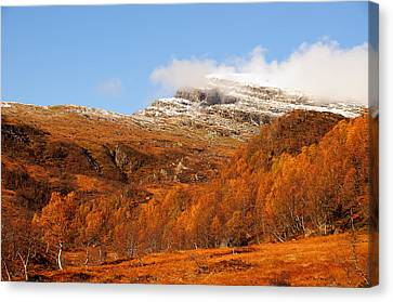 Autumn In The Mountains Canvas Print by Gry Thunes