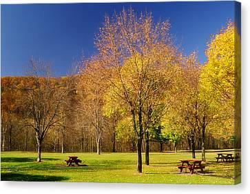 Autumn In The Park Canvas Print by Joann Vitali