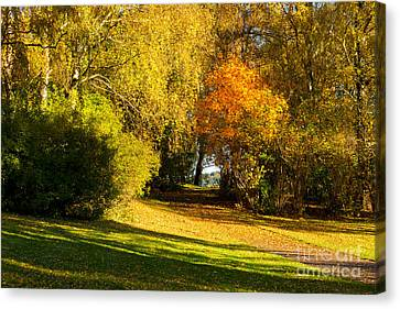 Autumn In The Park Canvas Print by Lutz Baar