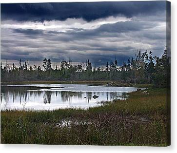 Autumn In The Salt Marshes Canvas Print by George Cousins