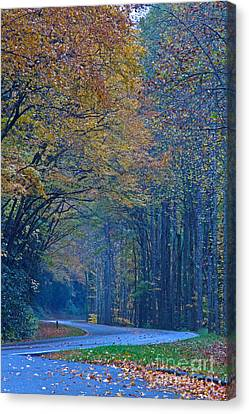 Autumn In The Smoky's  Canvas Print