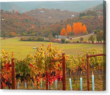Canvas Print featuring the photograph Autumn In The Valley by Brooks Garten Hauschild