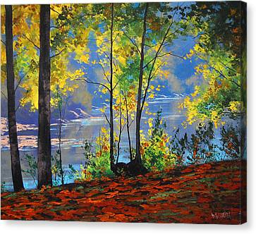 Beautiful Creek Canvas Print - Autumn In Tumut by Graham Gercken