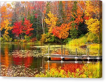 Autumn In Vt Canvas Print
