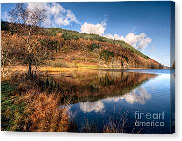 Autumn In Wales Canvas Print by Adrian Evans