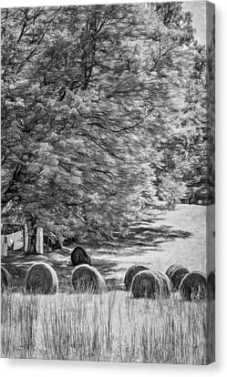 Autumn In West Virginia - Paint Bw Canvas Print by Steve Harrington