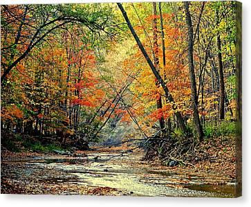 Autumn In Wonderland Canvas Print