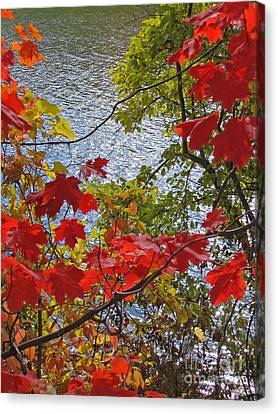 Autumn Lake Canvas Print by Ann Horn