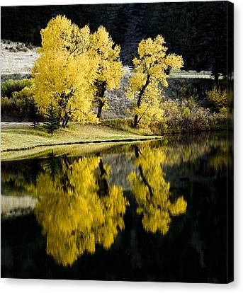 Autumn Lake Reflection Canvas Print by Patrick Derickson