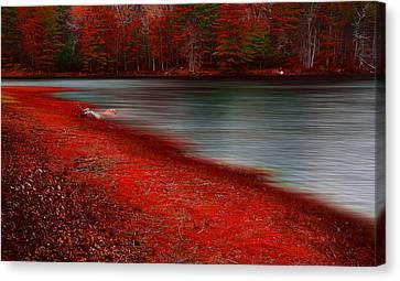 Autumn Land Canvas Print by Lourry Legarde