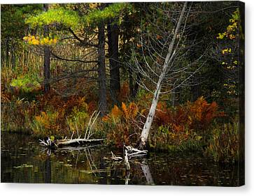 Autumn Landscape 1 Canvas Print by Jim Vance
